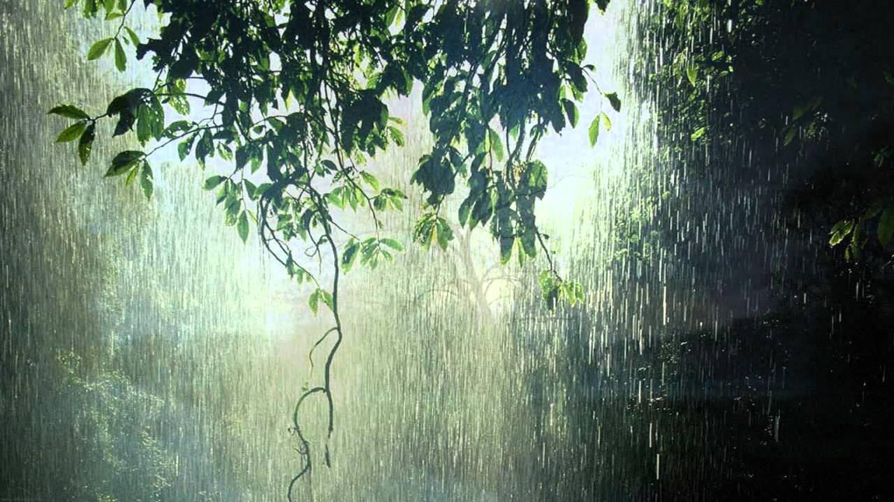 Mike Monday - When Rain Falls