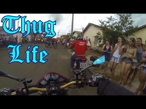 OS REIS DO THUG LIFE | THE KING OF THUG LIFE #56