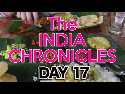 Food in Southern Indian: Thalis, Chapattis, Dosas, OH MY!