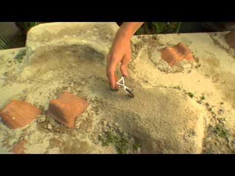 Flick Trix - Advanced Dirt Tricks