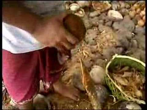 Oxfam Unwrapped Samoa - Campbell Live