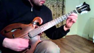 The Contradiction Reel -Weber Gallatin octave mandolin