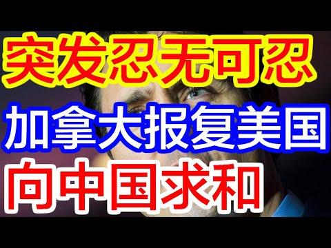 【热点新闻】突发忍无可忍,加拿大报复美国!向中国求和