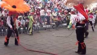 carnaval de papalotla 2014 (culebra)