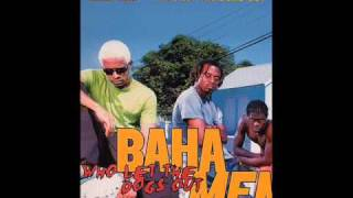 BAHA MEN-Who Let The Dogs Out  (Lyrics In Discription)