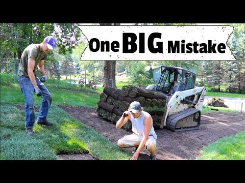 How to Install Sod - MISTAKES - Things you Don't know & How to do it right, Lawncare, Seeding, DIY