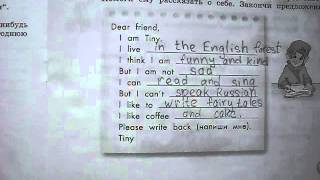 Выполнение домашних заданий 2,3 к уроку 33, 3 класс, Engoy English, УМК М.З. Биболетовой