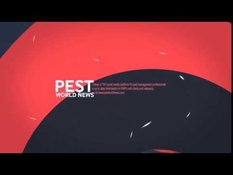 Pest World News VIDEO 2