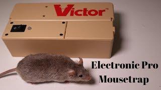Victor Electronic Pro Mousetrap. Mousetrap Monday.