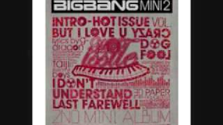 Big Bang-Craze dog
