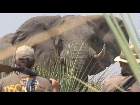 Jofie Lamprecht Safaris - Best Hunting Video Clips