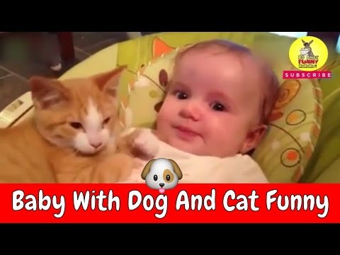 Best naughty Baby with cat and dog funny videos compilation 2017