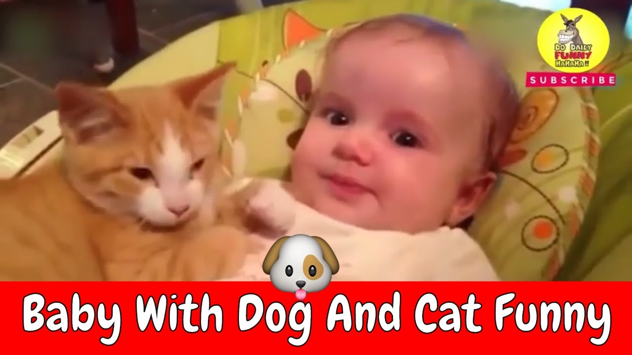 Best Baby With Cat And Dog Funny Videos Compilation 2017