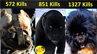 Dogs అత్యంత దృఢమైన భయంకరమైన Dogs || Strong and Fearless Dogs || ALK Facts