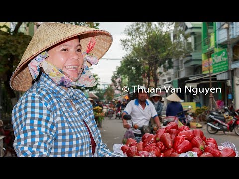 Anal Girl in Tra Vinh