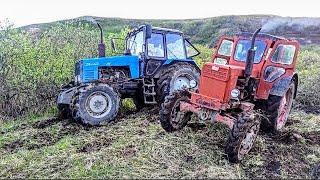 Трактор Т 40 и Трактор Беларус 1221 выташшил Застрявший Урал Грузовик с трудом