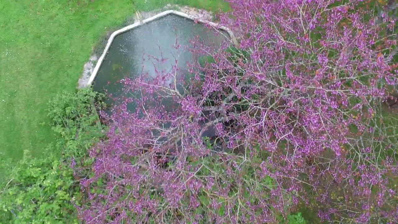 Manoir de l'Oseraie Grand gîte de charme Normandie