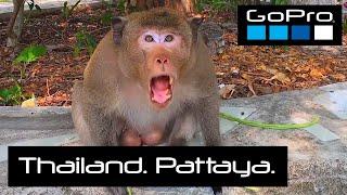 GoPro Тайланд Паттайя Trip 2020 4K Thailand Pattaya