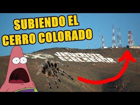 Subiendo el Cerro Colorado de Tijuana Baja California (Mostrando Cueva, Cruz y Cima)