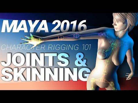 MAYA CHARACTER RIGGING TUTORIAL: JOINTS & SKINNING