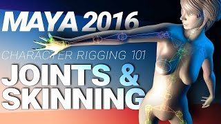 MAYA CHARACTER RIGGING TUTORIAL: JOINTS & SKINNING