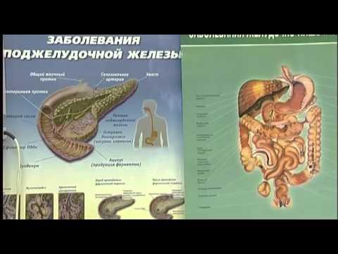 Тайны здоровья. Заболевания желудочно-кишечного тракта
