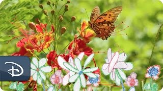 'Wishes for Wildlife' - Butterflies | Disney'...