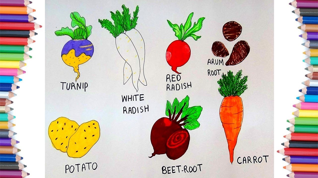 How To Draw Root Vegetables Youtube