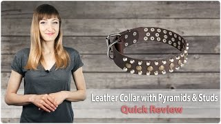 Walking Leather Dog Collar With Pyramids And Studs - Fordogtrainers Review