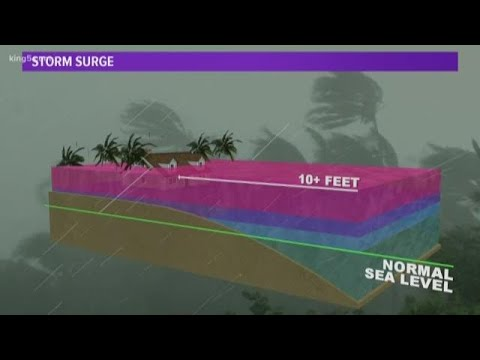 Seattle meteorologist explains storm surge and track of Hurricane Florence