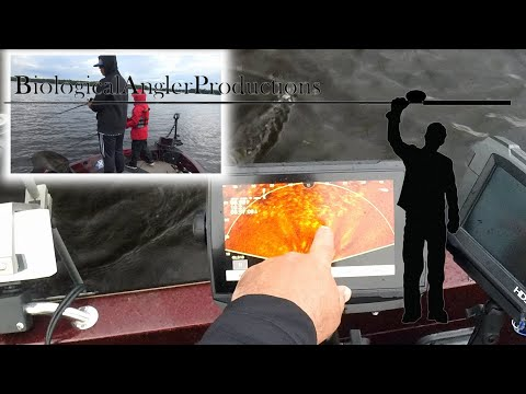 garmin-panoptics-perspective-mode-muskie!-first-video-of-this-kind.-epic-follow-and-strike!!!