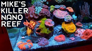 Mike's Killer Nano Reef Tank Video