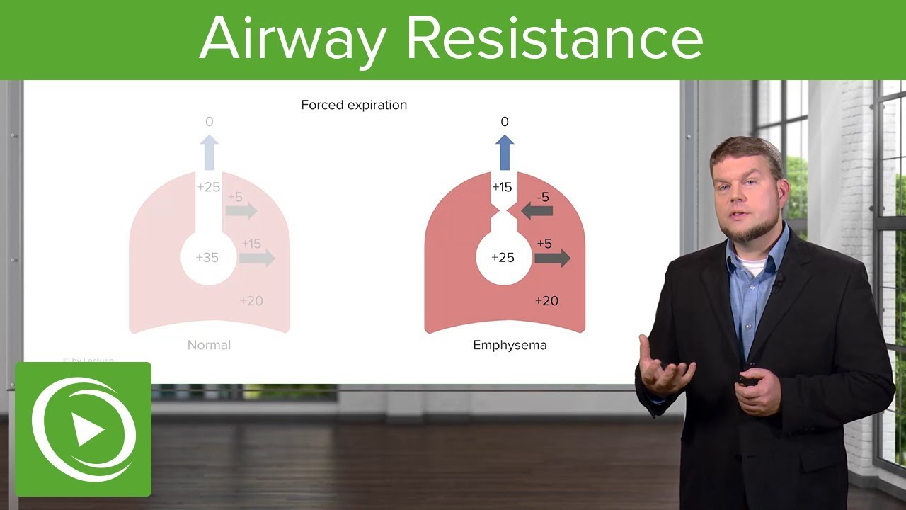 Airway Resistance:  Breathing and Lung Mechanics – Physiology | Lecturio