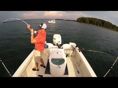 Catching Striped Bass on Lake Hartwell