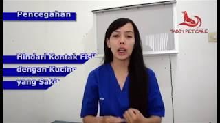 KOMPAS.TV - Meninggalnya tiga pasien Corona warga Banyumas, Jawa Tengah, yang mengalami gejala Happy.