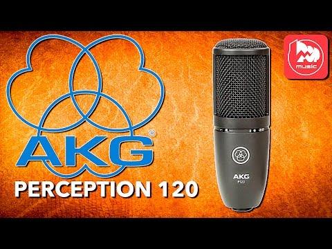 AKG PERCEPTION 120 (P120) - доступный студийный конденсаторный микрофон