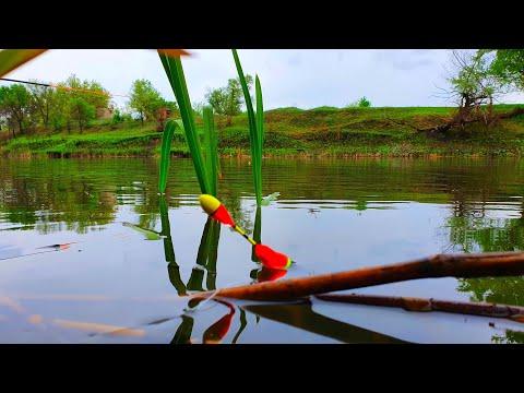 рыбалка на поплавок ловля карася на удочку