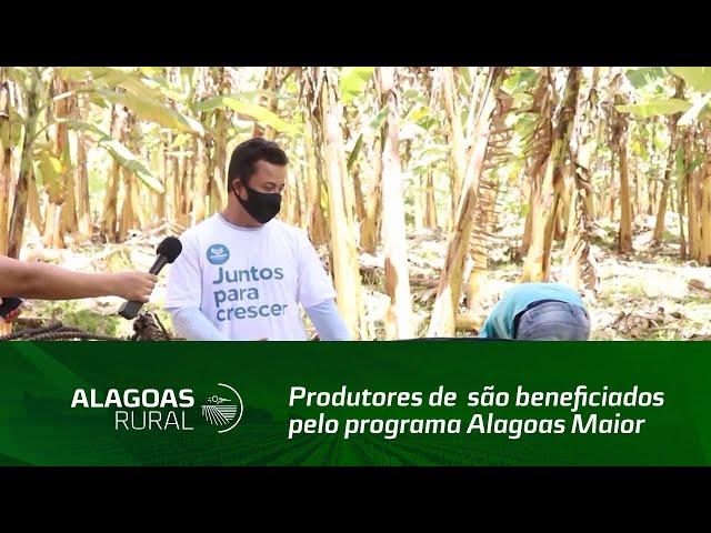 Produtores são beneficiados pelo programa Alagoas Maior, em União dos Palmares
