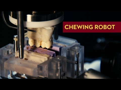 Chewing Robot at the University of Minnesota