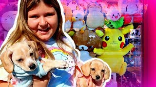 New Slime & Squishies Shopping with My New Puppies at the Mall!!! ~ Haul & Play Date with Friends!