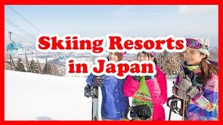 Ski Japan - 5 Best Skiing Resorts in Japan | Asia Ski Guide