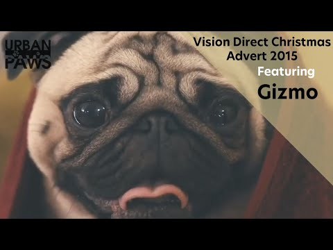 Vision Direct Advert Featuring Gizmo