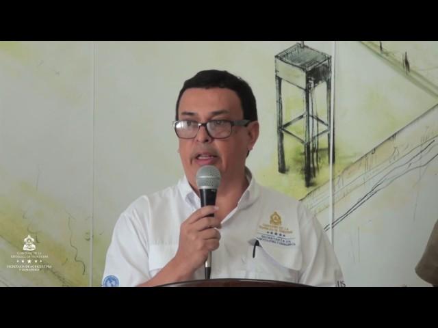 La SAG implementa estrategia para aumentar producción de aguacate