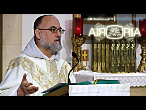 Remember Your Christian Identity and Thank God - Nov 13 - Homily - Fr Alan