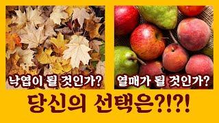 생존이 곧 성공이다! 낙엽 아니면 열매 | 이 시대의 …