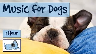Heres an hours worth of calming animal music, perfect for your dog!...