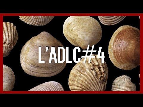 Bivalves et Fougères - l'ADLC#4