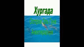 Египет Хургада Остров Эль Гуна Самый лучший Аквариум Египта Красоты моря Фауна Египта