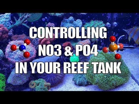 Controlling Nutrients NO3
