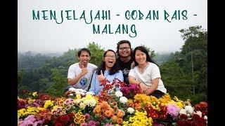 Menjelajahi Coban Rais - Trip Malang